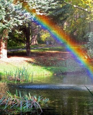 rainbow-907146_640