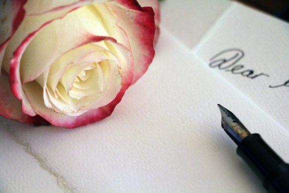 pale-rose-1452656_640